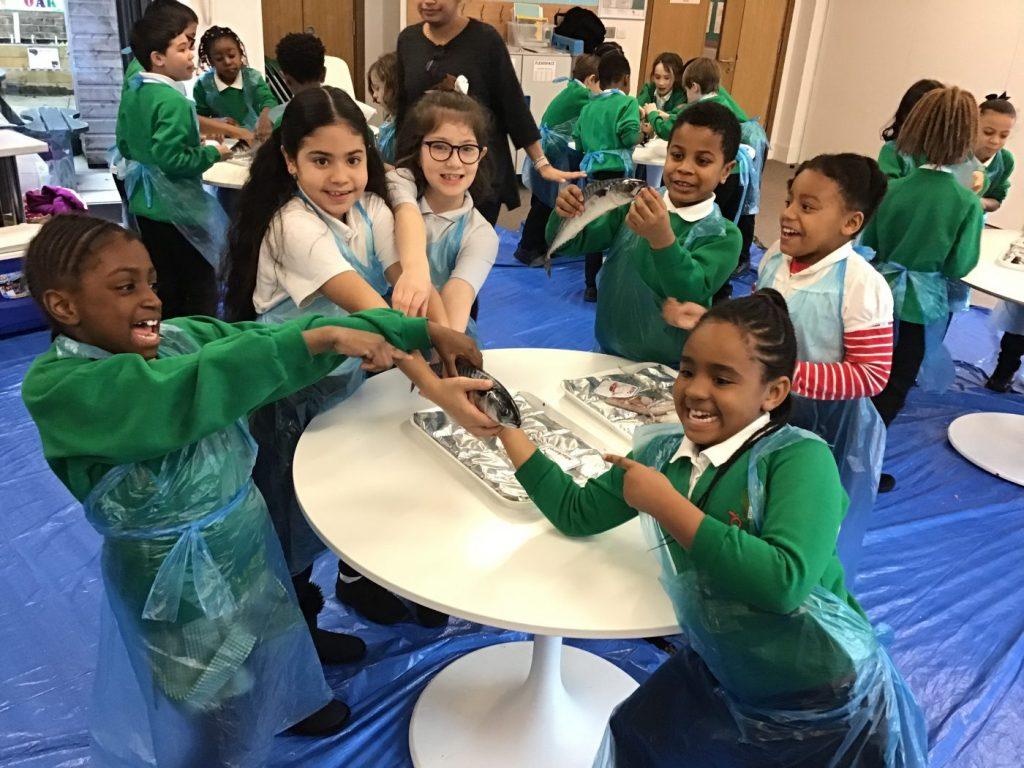 Orchard Primary School | Term Dates